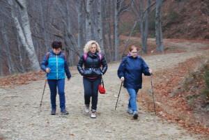 15-11-2015 Camminata Rif-Le Barbe 004