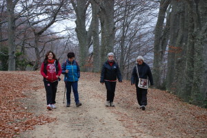 15-11-2015 Camminata Rif-Le Barbe 030